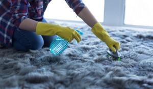 kvalitní čištění koberců