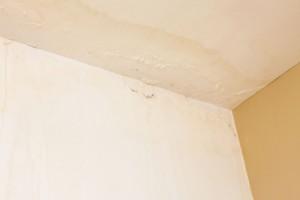 Co zabere na plísně na stěnách bytu?